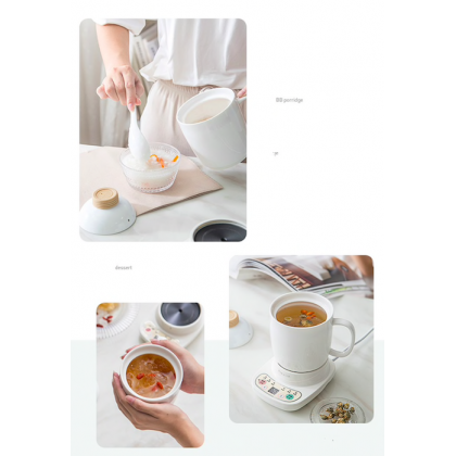 Automatic Multi Functional Mini Health Stew Cooker Cup 600ML with Preset Option (MTS-1016D)