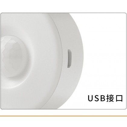 Portable USB Rechargeable Multifunctional/ Automatic Night or Led Light (CH0020)